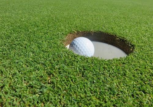 Jackal Creek Golf Estate Image 6